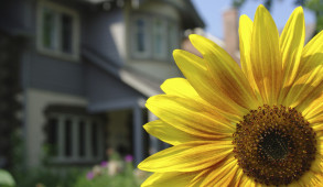 New York City brokers say more buyers are checking out homes during the traditionally slower summer season.