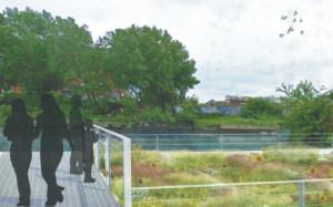 Gowanus Sponge Park rendering