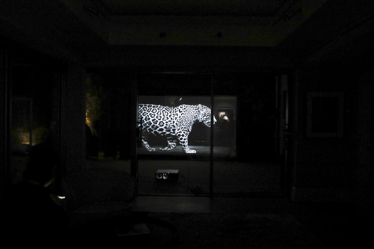 The Bond x Black Jaguar-White Tiger : Premiere Collection Cocktail